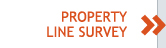 Property Line Survey